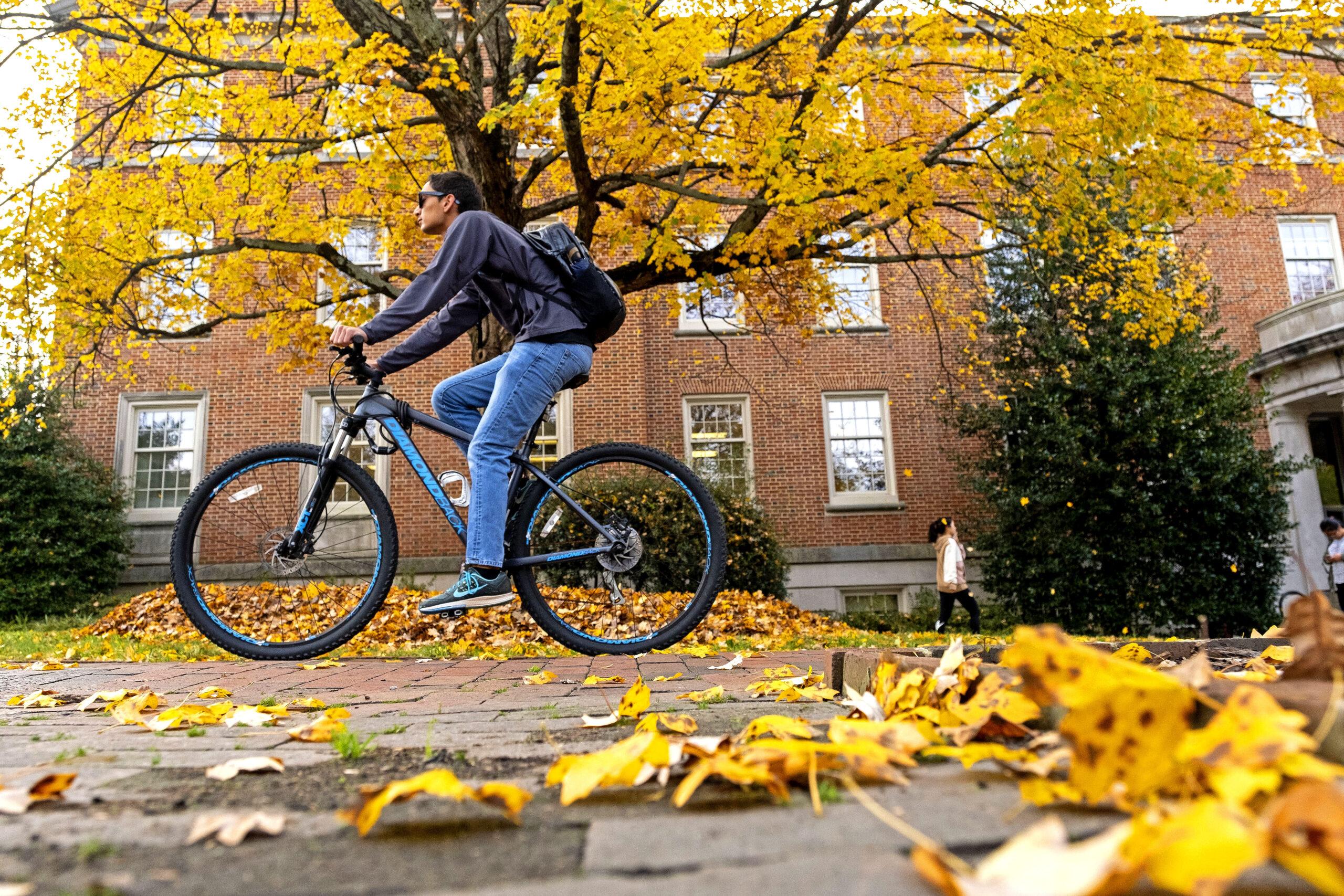 031518_fall_scenes057